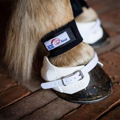 Boots - klokker