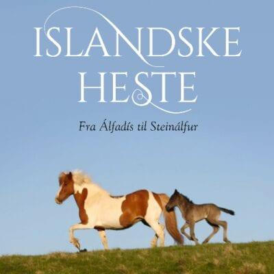 Navnebogen - islandske heste, fra Álfadís til Steinálfur